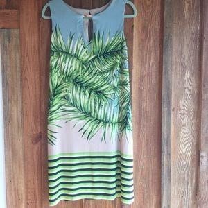 Sangria shift palm tree dress size 8 women's EUC